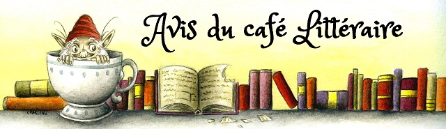 avis du cafe litteraire internet